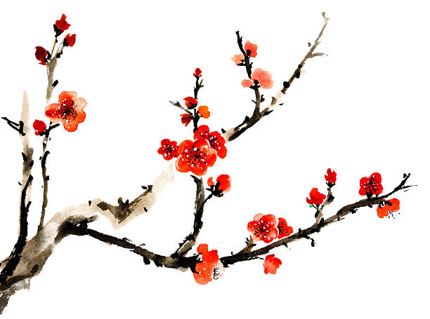 ume-blossom-clipart-japanese-culture-1.j